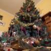 Christmas Tree2  2012